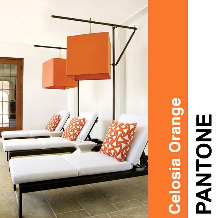 Celosia-Orange  2014 trendy kolorystyczne według PANTONE Celosia Orange