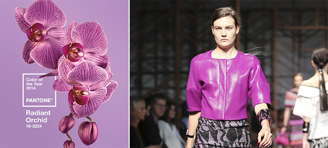 Trendy 2014 Projektowanie wnętrz : RADIANT Orchid colorem roku PANTONE 12  Dookoła 12