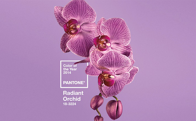 2014-interior-design-trends_Radiant-Orchid-is-the-PANTONE-COLOR-OF-THE-YEAR-2014